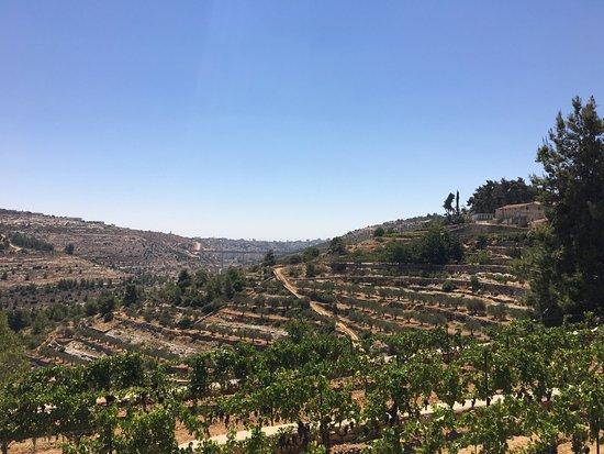 Beit Jala: photo2.jpg