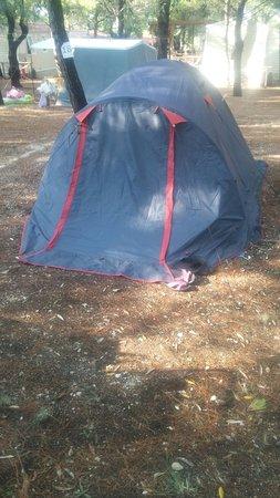 Camping Lama Le Canne: IMG-20160807-WA0002_large.jpg