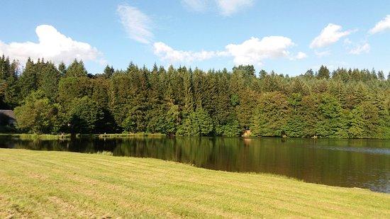 Meymac, Frankrijk: Lac de Seychemailles