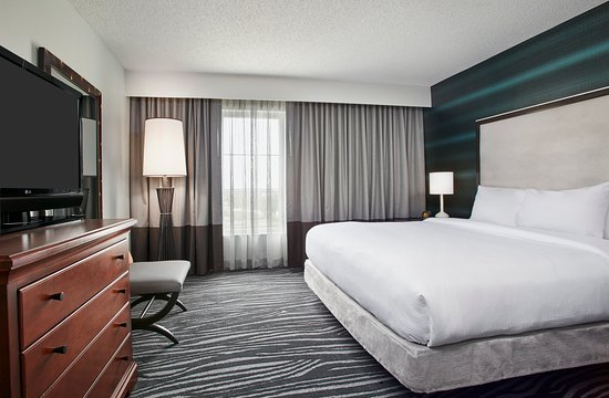 Embassy Suites by Hilton Orlando Airport: Suite - King Bed