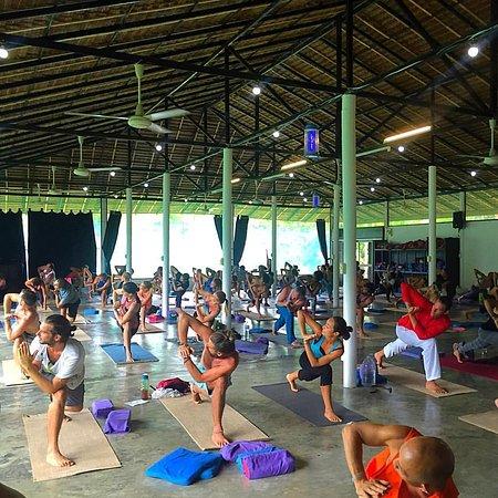 Agama Yoga: International Yoga Day