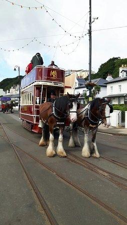 Douglas Bay Horse Tramway: 20160807_104527_large.jpg