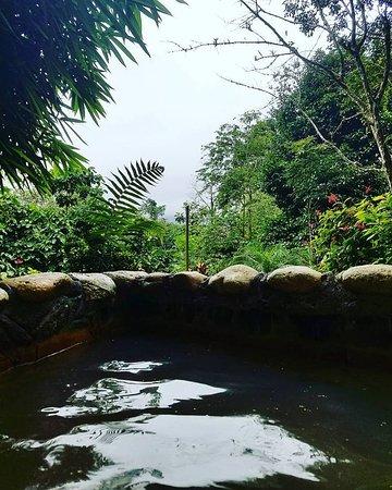 Foto de Hotel Kokoro Arenal