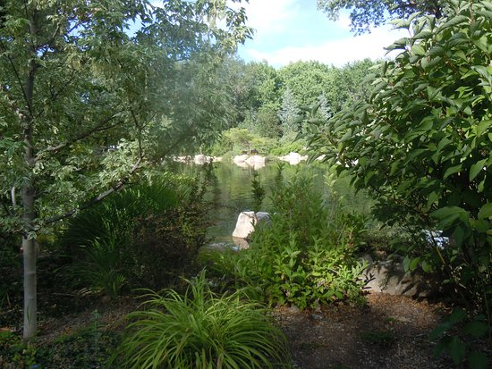 Different scenery at the botanical gardens - Picture of Albuquerque ...
