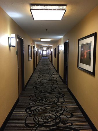 Wendover, UT: Hallway carpet and lights reminded us of a casino
