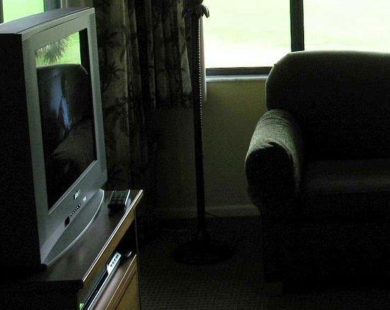 Lehigh Acres, FL: Ghost in TV screen. Reflection of boy sat on sofa! TV definitely off!!! Blue light on sofa arm!!