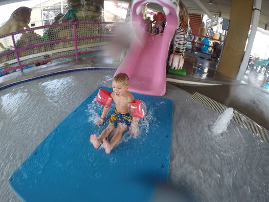 Water-Zoo Indoor Water Park: photo0.jpg