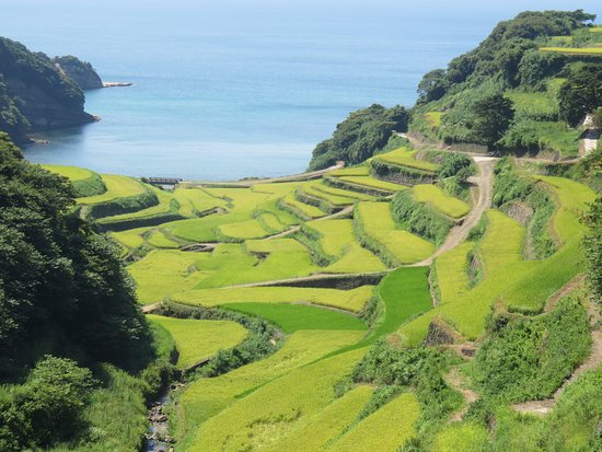 Genkai-cho, Japón: 浜野浦の棚田