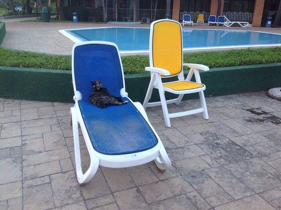 Hotel Roc Barlovento: photo1.jpg