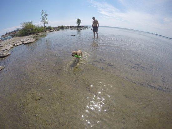 Dog Friendly Attractions Ontario