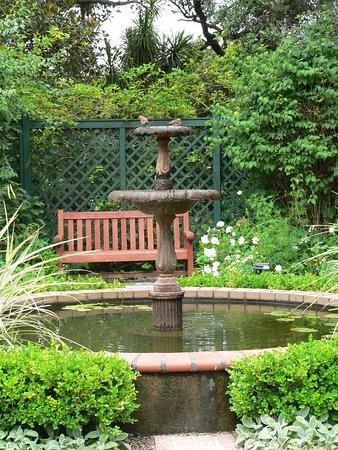 Parnell Rose Gardens: Quiet sanctuary with birds in bath