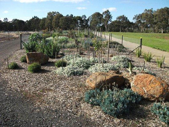 Melton Botanic Garden