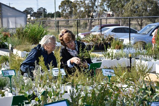 Melton, Australia: Friends Plant Nursery - Tues, Thurs, 2nd & 4th Sundays 10am-1pm