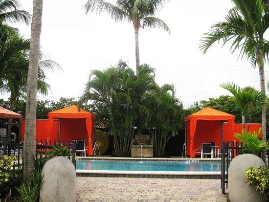 Wilton Manors, Floride : Salt Water Pool