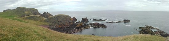 St Abbs, UK: IMG_20160809_142643_large.jpg