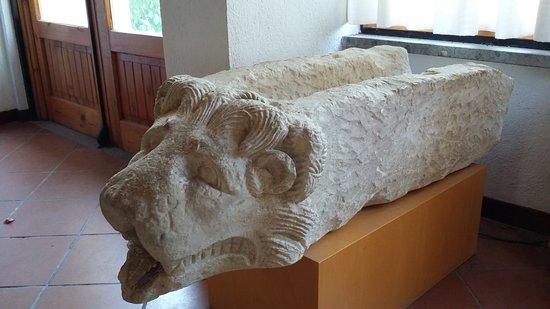 """Museo Naturalistico ed Archeologico """"Paolo Barrasso"""""""