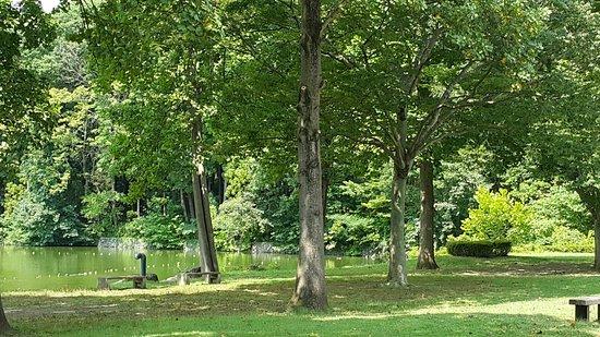 Igashira park