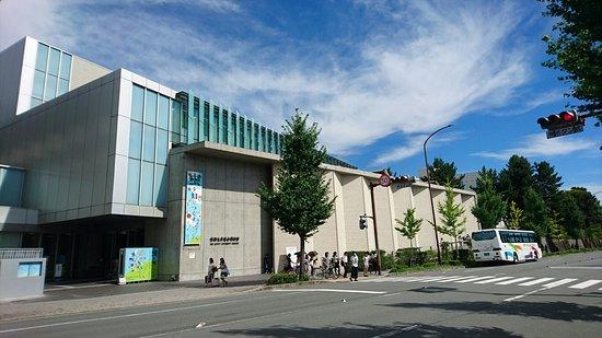 The Kyoto University Museum