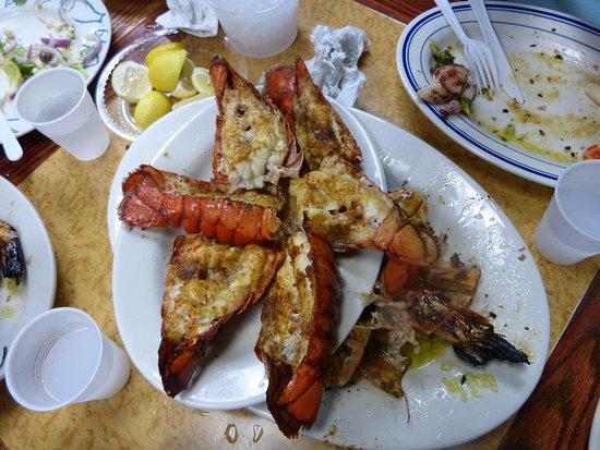 Astoria Seafood Istakoz Kuyrukları