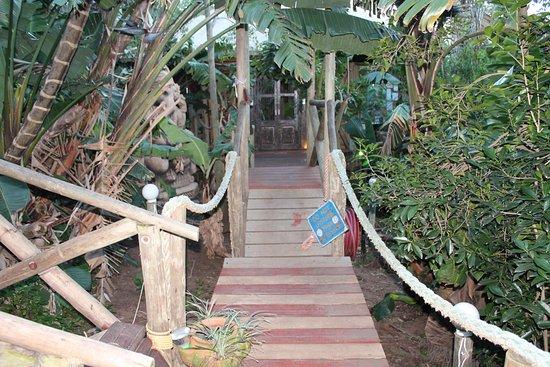 Umzumbe, جنوب أفريقيا: yoga access
