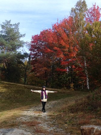 White Mountain National Forest: 喜見紅葉