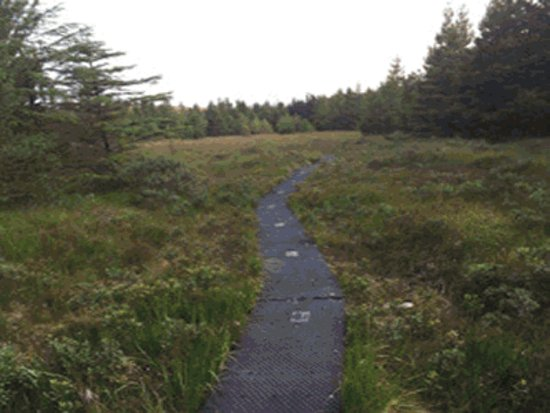 Oughterard, Irlanda: Derroura's purpose built trail
