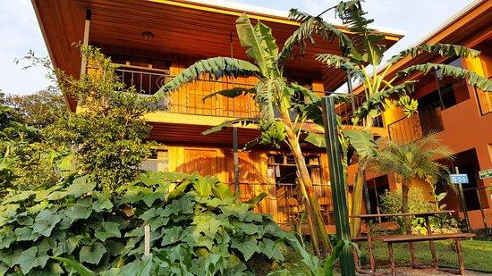 Hotel Cipreses Monteverde Costa Rica: Desde el porche de tu habitación tendrás siempre una vista similar a esta, fantástica!