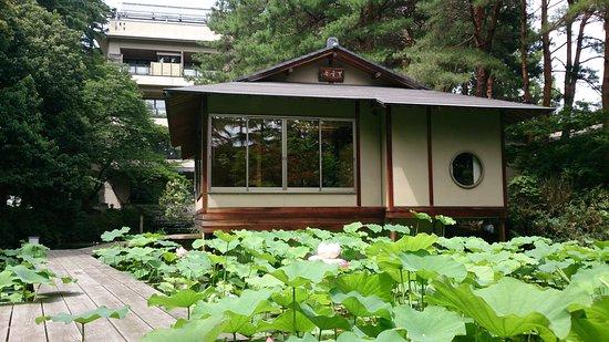 Nomi, Japón: 夏のまつさき旅館 全景