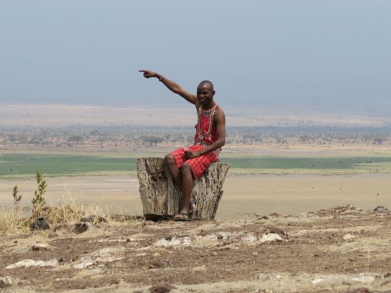Amboseli National Park, كينيا: The fantastic panorama with Nelson having a well earned rest!