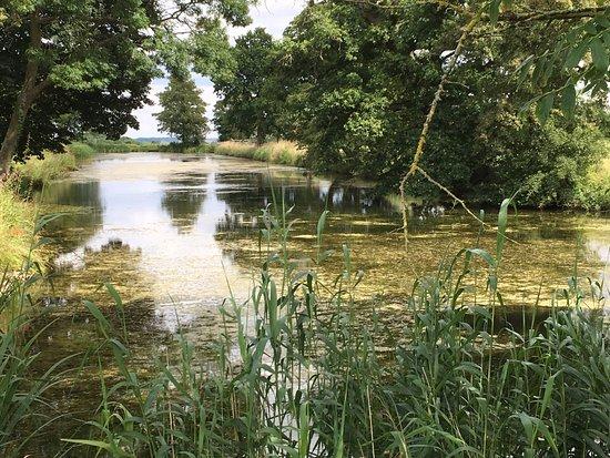 Oundle, UK: lovely moated walk area