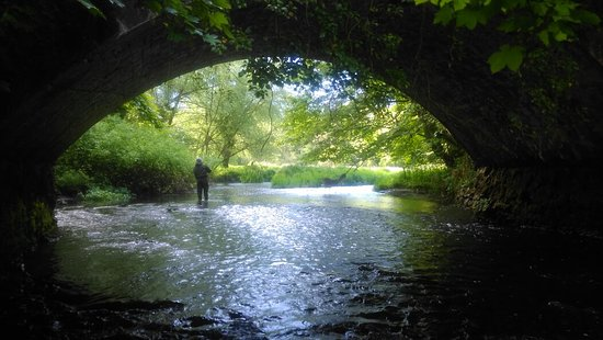 Celbridge, Irlandia: Love Fishing Ireland