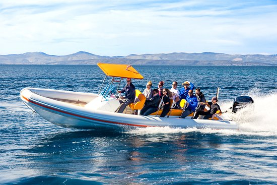 Brac Excursions: One of the rib boats that are used for fast sea transfers and one day excursions.