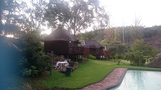 Bananien Lodge Picture