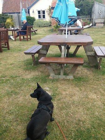 Dog Friendly Hotels In Walberswick