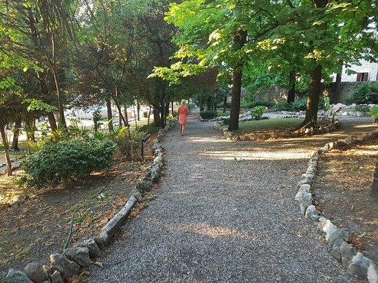 Gargagnago di Valpolicella, Italy: 20160719_193138_large.jpg