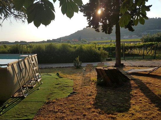 Gargagnago di Valpolicella, Italy: 20160719_193257_large.jpg