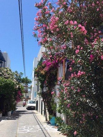 Naxos Resort Beach Hotel: photo4.jpg