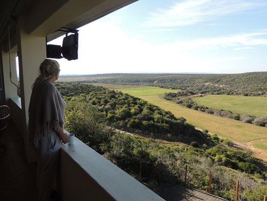 """Kududu Guest House: hvis du godt kan lide ro og smuk natur, så er det """" mit Afrika"""", du vil opleve på Kududu"""
