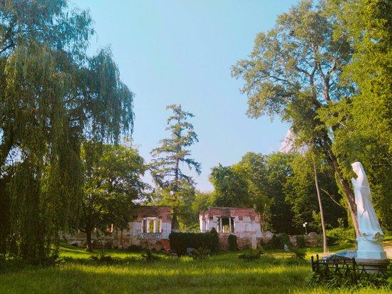 Bila Tserkva, Ucrania: CYMERA_20160627_171647_large.jpg