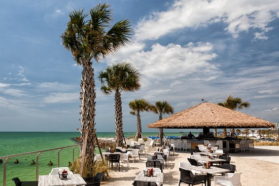 Sandbar Restaurant Bar Clearwater Restaurant Reviews
