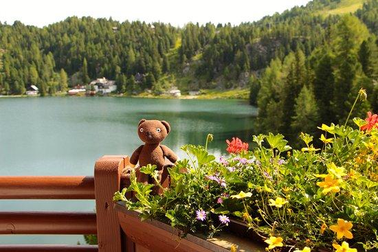 Hotel Hochschober: Aussicht auf den Turracher See
