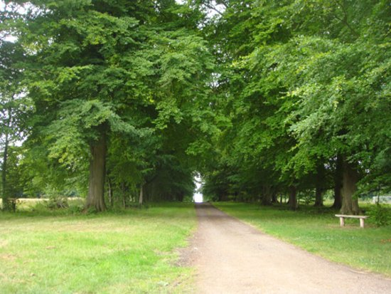 Northleach, UK: A long path to Sherborne Estate (Park)