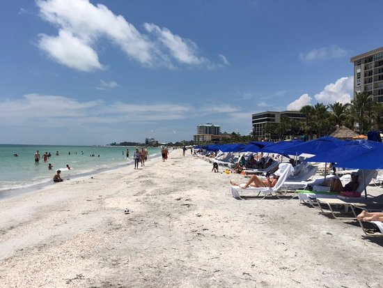 The Ritz-Carlton, Sarasota : Beautiful water and great service at Beach Club