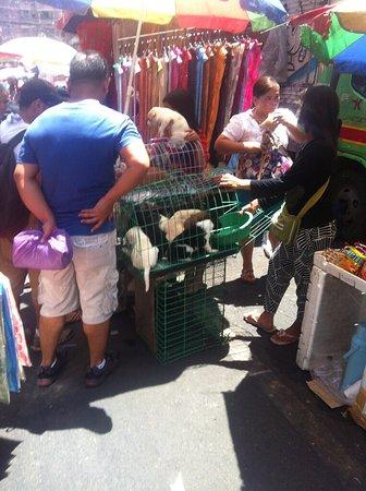Chinatown: photo3.jpg