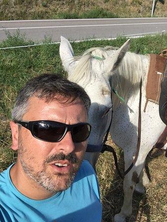 Wild Horse Pirineus Outdoor
