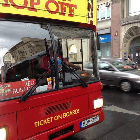 Giraffe Hop On Hop Off City Tour : L'autista rozzo
