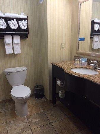 Hampton Inn Rochester-Irondequoit: Clean bathroom