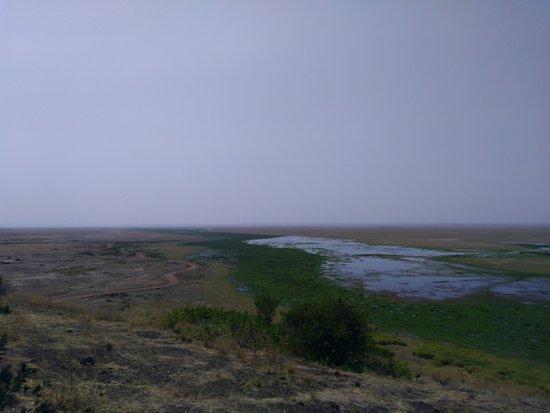 Amboseli National Park, كينيا: Vistas