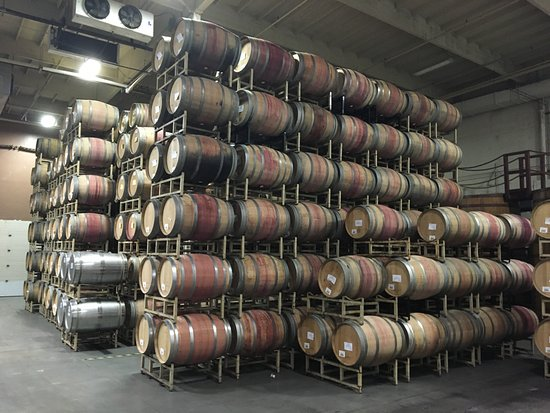 St. Supery Winery : The aroma of french oak is a feast for the nose.