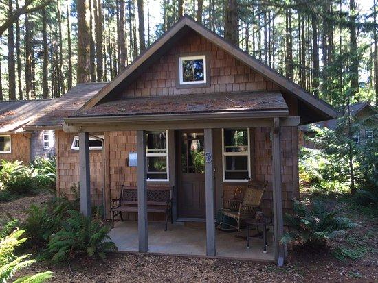 WildSpring Guest Habitat: Our wonderful little cabin - Raintree #2